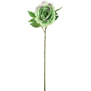 Artificial Peony Flower Two Tone Mint Green- 27""